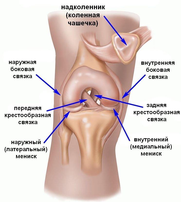 hogyan kezeljük a térdízület medialis meniszkuszának törését)