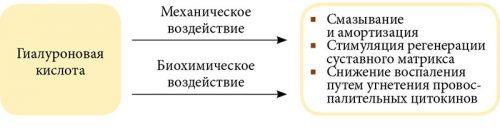 a térdízületbe való beillesztés gyógyszere)