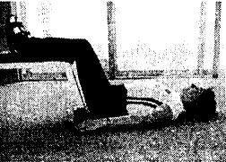 Упражнения для поднятия внутренних органов при опущении