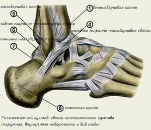 bokakötések törése erős izületi fájdalomcsillapító