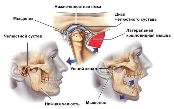 a temporomandibularis ízületi gyulladás